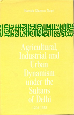 Image for Agricultural, Industrial and Urban Dynamism under the Sultans of Delhi 1206-1555